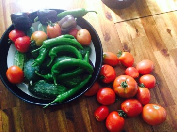 Green Peppers and Tomatoes